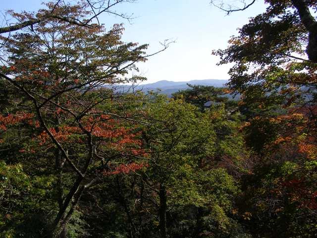 舘山公園2