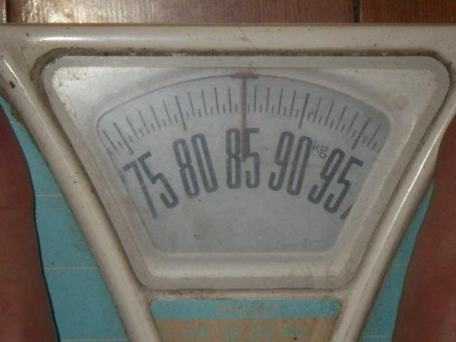 IMGP2995.jpg