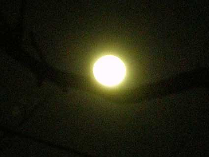 22日の月