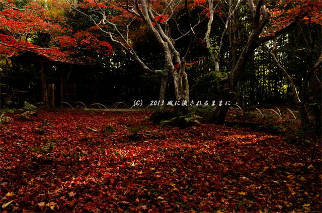 2013年 京都・嵯峨野 厭離庵の紅葉13