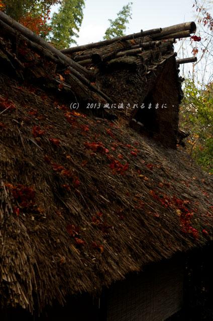 2013年 京都・嵯峨野 厭離庵の紅葉20
