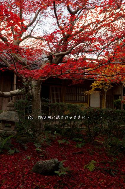 2013年 京都・嵯峨野 厭離庵の紅葉6