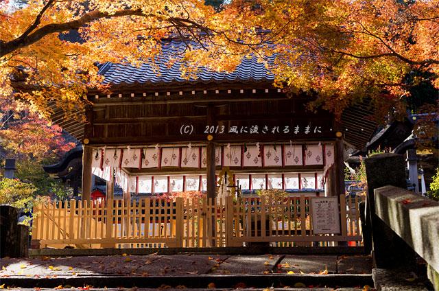 京都・亀岡 鍬山(くわやま)神社の紅葉1