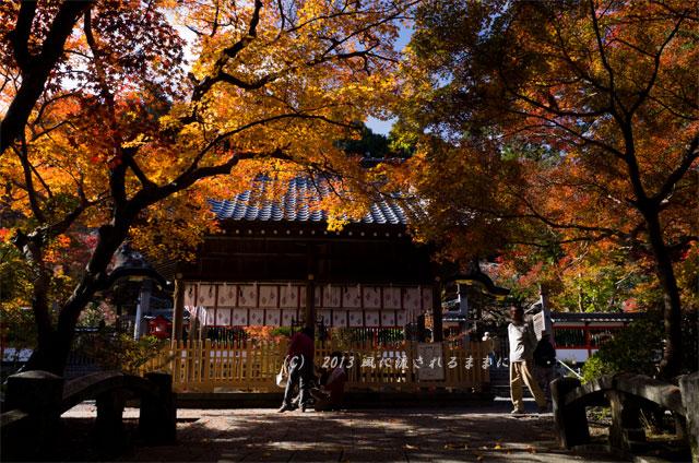 京都・亀岡 鍬山(くわやま)神社の紅葉2
