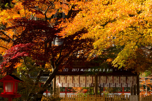 京都・亀岡 鍬山(くわやま)神社の紅葉3