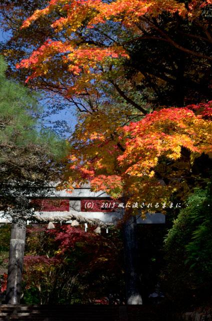 京都・落西 大野原神社の紅葉1