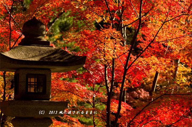 京都・落西 大野原神社の紅葉10