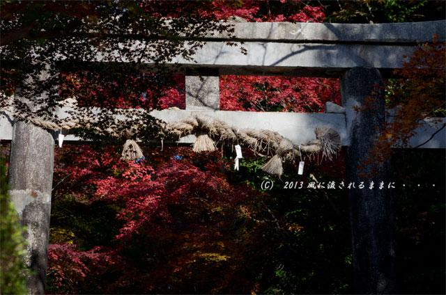 京都・落西 大野原神社の紅葉2