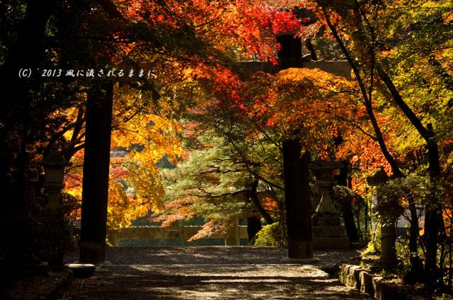 京都・落西 大野原神社の紅葉3