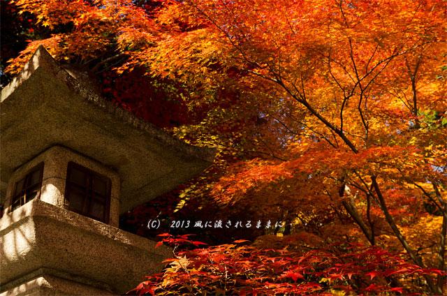 京都・落西 大野原神社の紅葉30