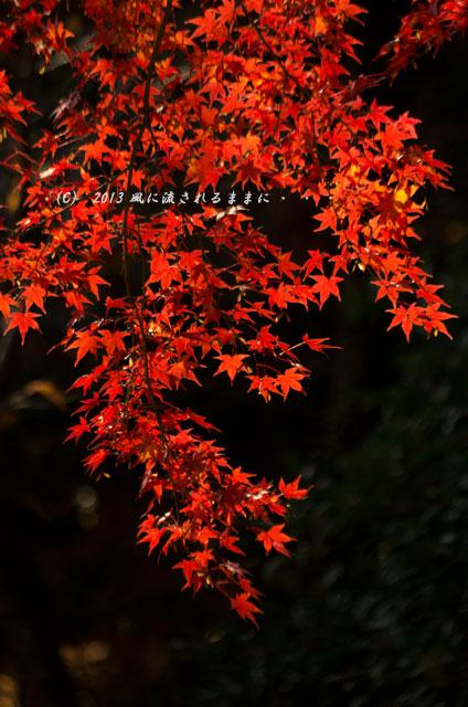 京都・落西 大野原神社の紅葉8