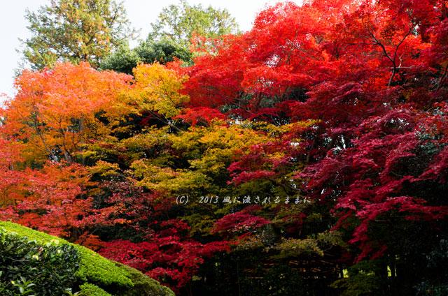 2013年 京都・詩仙堂の紅葉10