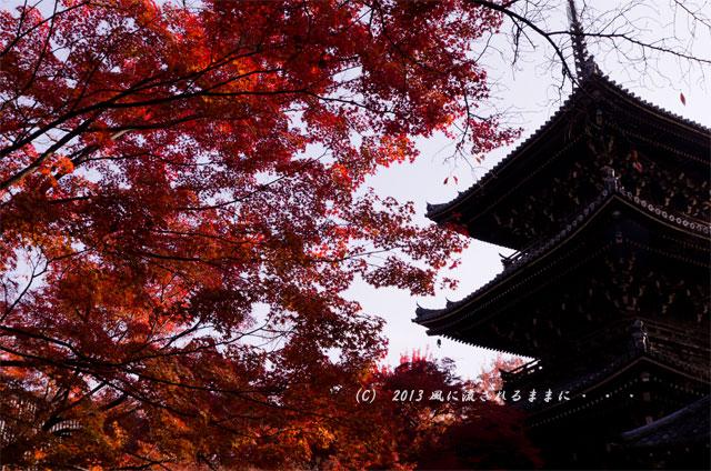 2013年 京都・真如堂の紅葉4