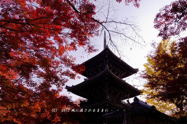 2013年 京都・真如堂の紅葉6