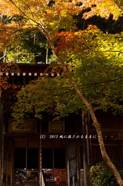 京都・落西 勝持寺(しょうじじ)の紅葉25