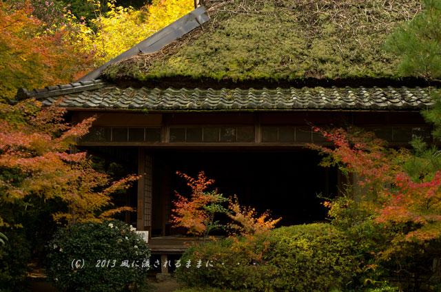 京都・嵯峨野 滝口寺の紅葉4