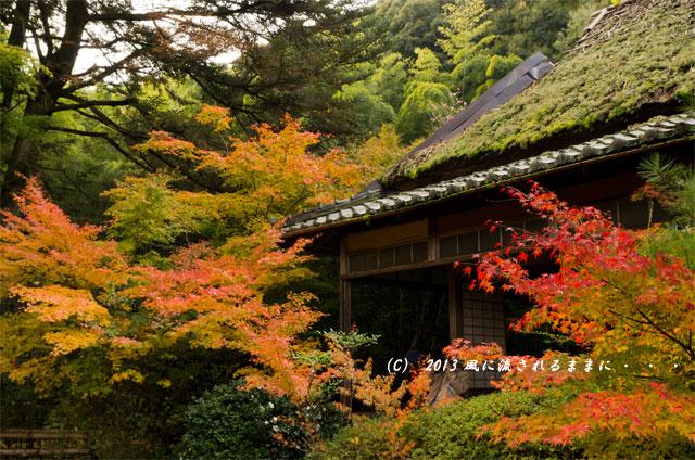京都・嵯峨野 滝口寺の紅葉5