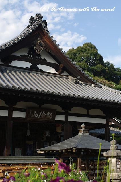 奈良 安部文殊院1