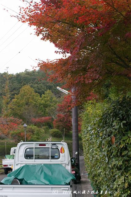 京都嵐山 風景3