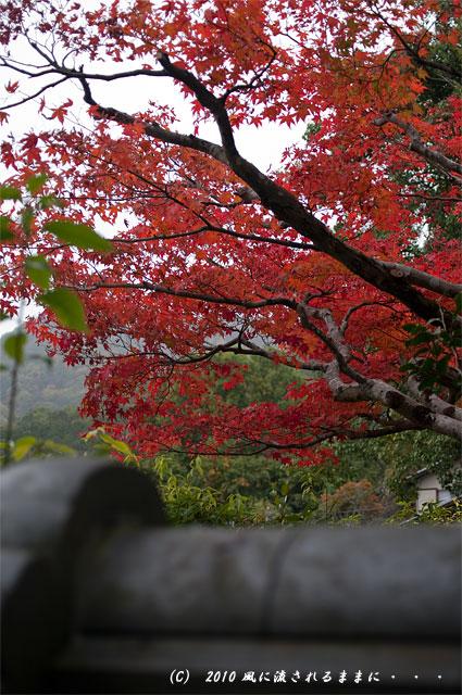 京都嵐山 風景4