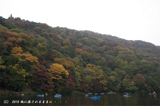 京都・嵐山 紅葉1