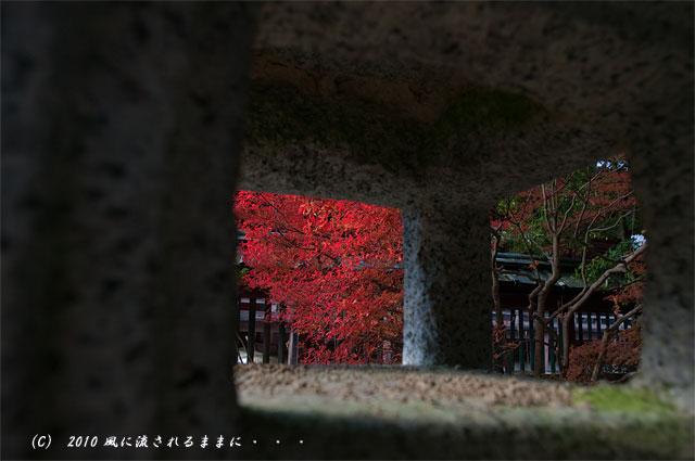 京都・毘沙門堂 灯篭から見た紅葉