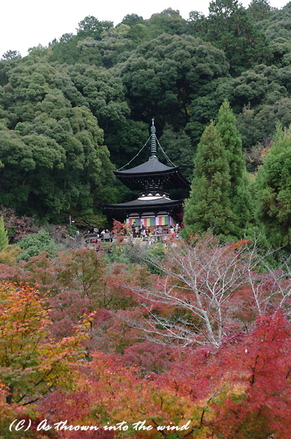 京都・永観堂1