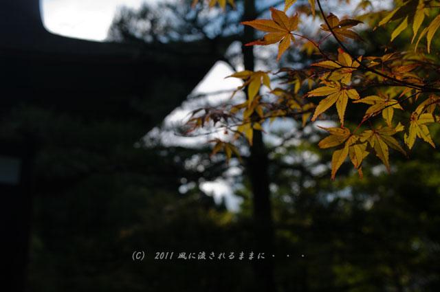 京都・酬恩庵一休寺の風景1