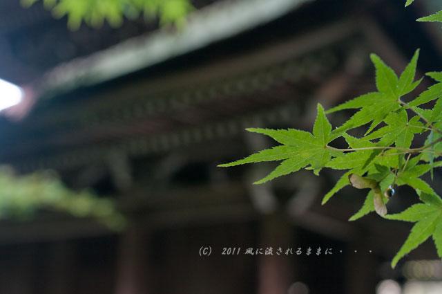京都・酬恩庵一休寺の風景2