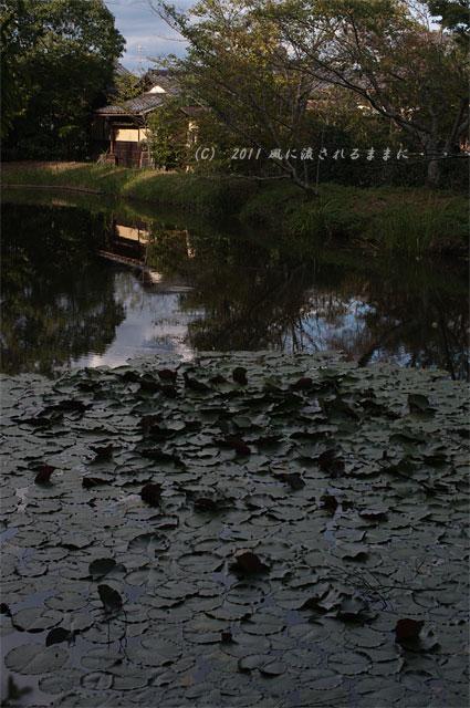 京都・酬恩庵一休寺の風景4