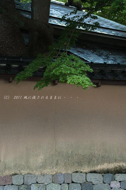 金沢・長町武家屋敷1