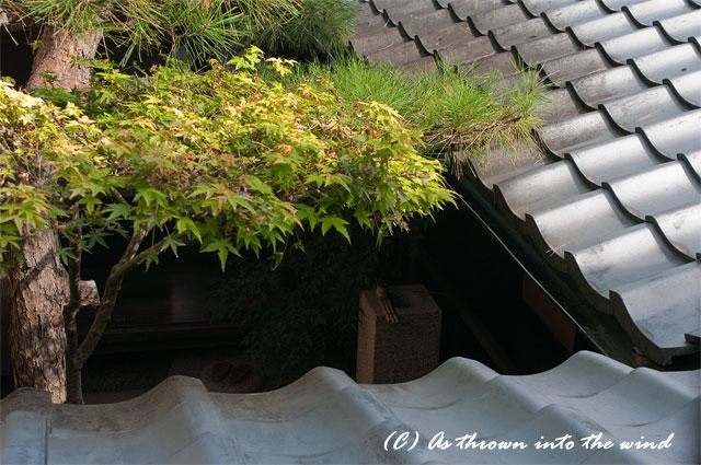 奈良・ならまち 格子の家6