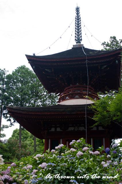 久米寺 多宝塔1