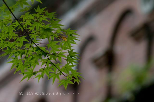 南禅寺・水楼閣2
