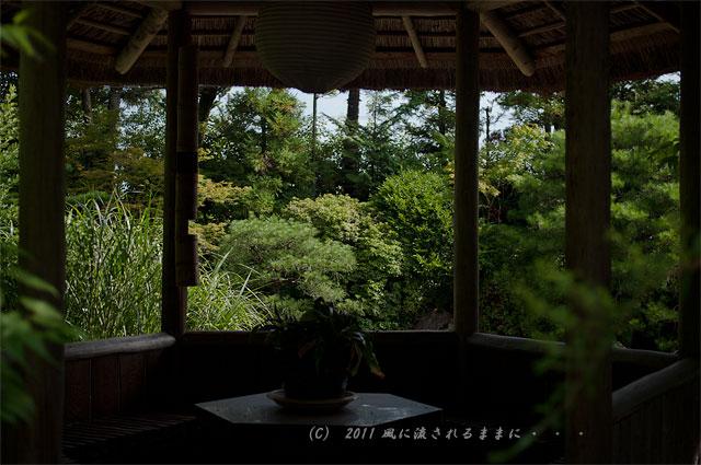 京都・退蔵院 余香苑3