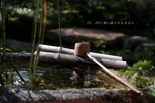 京都・実相院 庭園1
