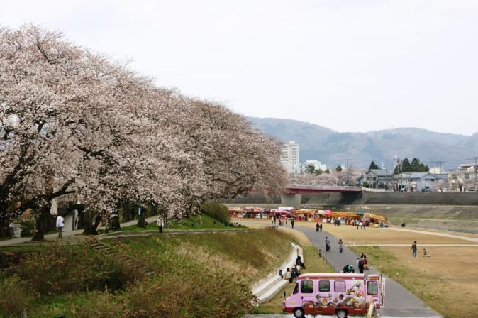 DSC02378桜祭り