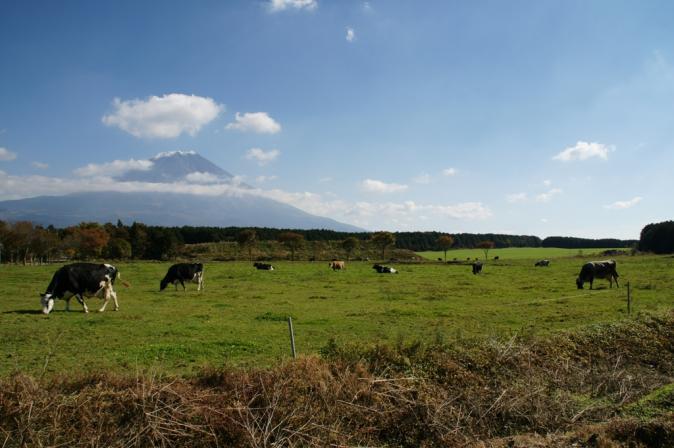 DSC09233富士山101106