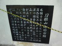 J0010004_20101013230728.jpg