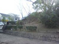 J0010005_20100206102259.jpg