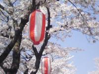 J0010046_20110420121008.jpg