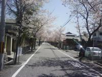 J0010054_20110420121159.jpg