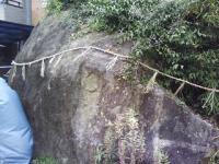 J0010083_20120111114325.jpg
