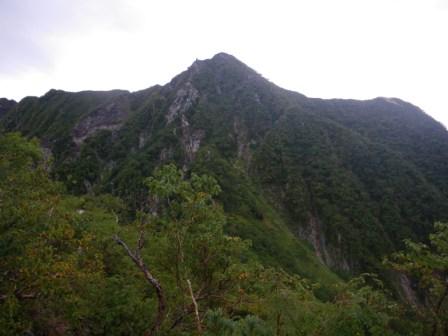 西岳016