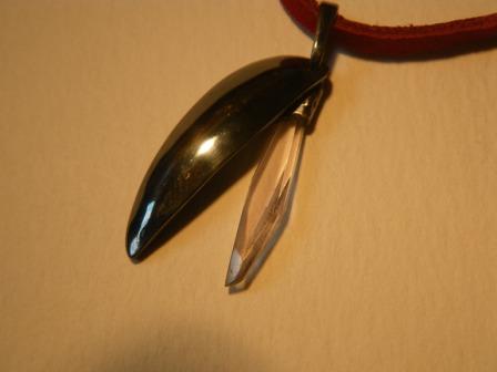 昆虫の羽012