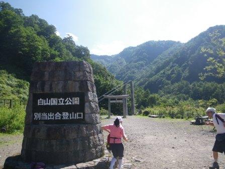 白山002