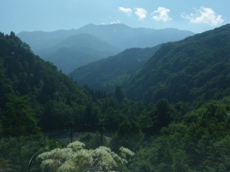 石川県 南竜ヶ馬場キャンプ場 の写真g2255