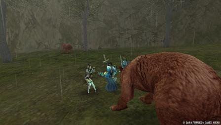 クマ様が見ている