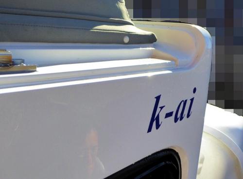 img2014-10-k-ai-PopUp03.jpg