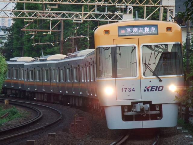 DSCF7001.jpg